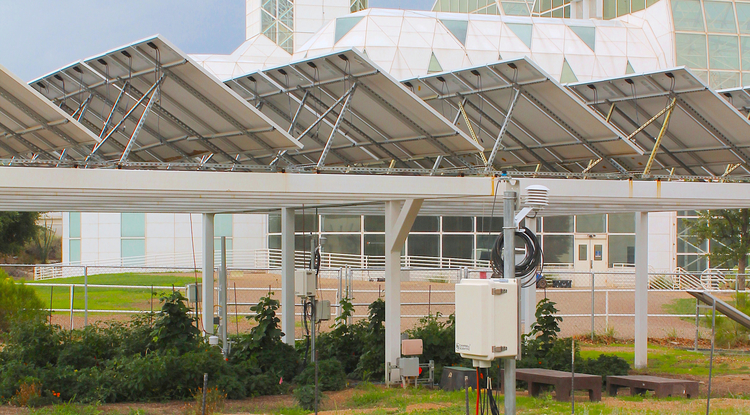 Agrivoltaics Proves Mutually Beneficial Across Food, Water, Energy Nexus