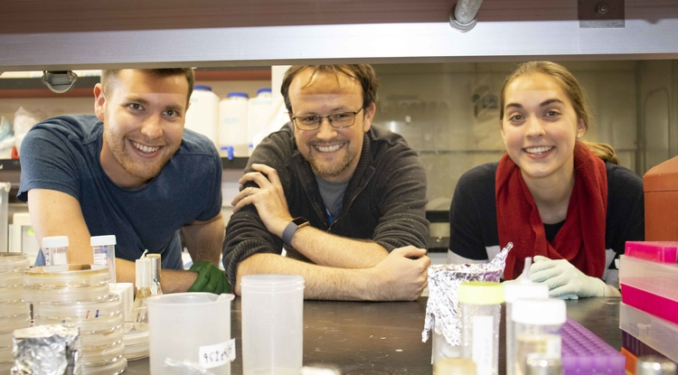 Graduate student Aaron Byrd, assistant professor of molecular and cellular biology and a BIO5 Institute member Ross Buchan and undergraduate senior Amanda Warner in the lab. (Photo: Michele Vaughan)