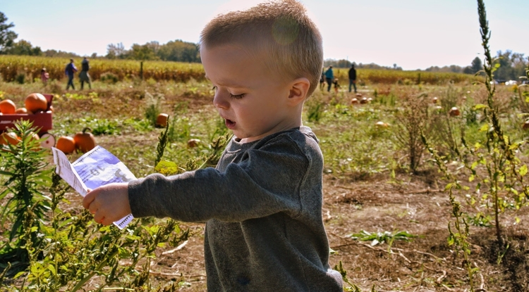 Children who live on farms, where they are exposed to sources of environmental bacteria such as livestock and dusty barns, are less likely to develop asthma.