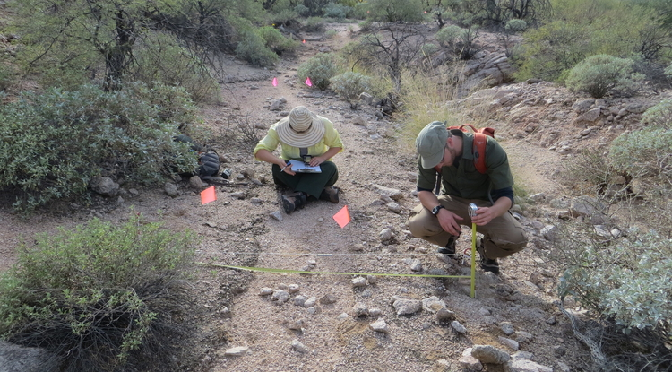Former UArizona graduate students Sharlot Hart (left) and Mario Battaglia record the physical attributes of a trail used by the Tohono O'odham in Organ Pipe Cactus National Monument. The work was part of a project to find and document the ancient trails so the National Park Service can preserve and protect them. (Photo courtesy of T.J. Ferguson)