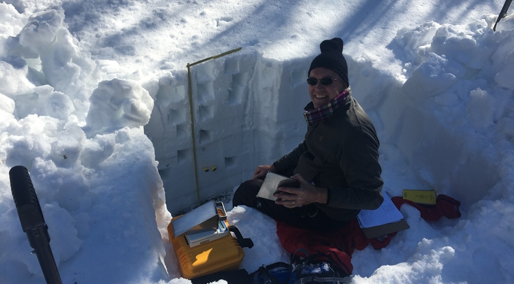 """Willem van Leeuwen, a UA professor of natural resources and the environment, measures snowpack in a """"snow pit"""" along Arizona's Mogollon Rim during a snow survey in 2017.(Photo: Patrick Broxton, ©2017)"""