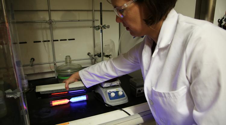 Co-inventor Colleen Janczak uses a fluorescent light to illuminate the new nanomaterials. (Photo: Paul Tumarkin/Tech Launch Arizona)