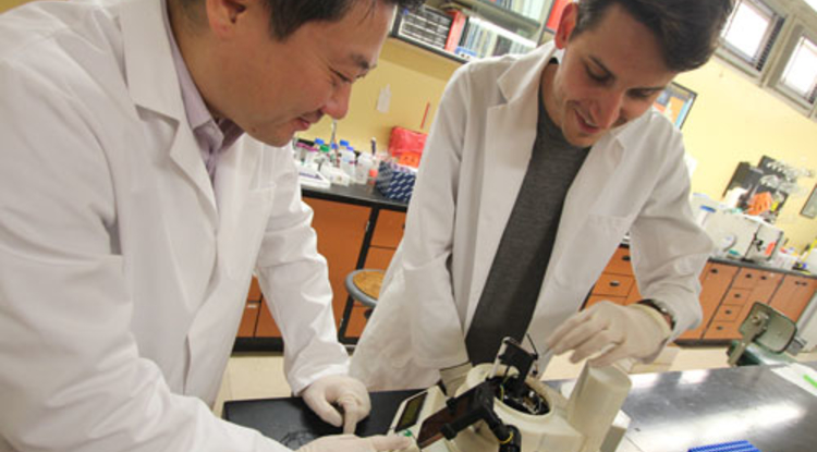 Jeong-Yeol Yoon and Dustin Harshman work on a device that can analyze pathogens in real time. (Photo: Pete Brown/College of Engineering)