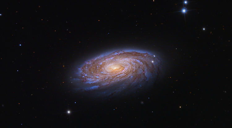 Galaxies start as messy, unruly teenagers and settle down into orderly spirals such as the M88 galaxy about 47 million light years away, here captured by Adam Block of the UA Mount Lemmon SkyCenter.