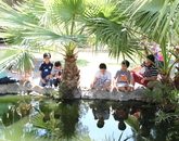 "Participants visit the UA ""turtle pond,"" a water feature and surrounding garden area."