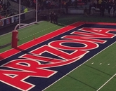 """""""Whenever the Wildcats cross that line to score, I love how happy it makes the entire stadium!"""" – Jill Hall, manager of alumni and community engagement, College of Medicine – Tucson"""
