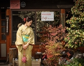 Li Zeng, a sophomore East Asian Studies minor, won the Cultural Snapshot prize. She poses in a kimono amid blossoming flowers during her time at Tokyo International University.