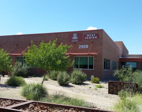 With advanced laboratory capabilities and expertise in coronavirus research, the University of Arizona Water and Energy Sustainable Technology Center is uniquely situated to conduct sewage surveillance for the coronavirus.