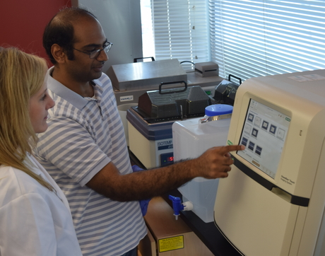 Julie Ledford and Akarsh Manne, an associate scientific investigator for Dr. Monica Kraft, discuss results from a recent genetic analysis of samples in Ledford's lab at the UA's BIO5 Institute.