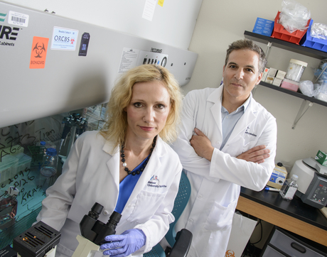 Agnieszka Witkiewicz and Erik Knudsen investigate tumors on the molecular level in hopes of opening up new approaches to more effective treatment. (Photo: BioCommunications, Kris Hanning)