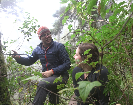Professor Kevin Anchukaitis and graduate student Talia Anderson coring trees in Guatemala. (Photo: Mari Cleven)