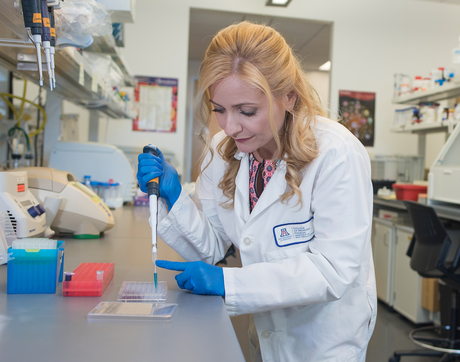 Melissa Herbst-Kralovetz led a team of researchers that identified three compounds to distinguish cervical cancer patients from healthy women. (Photo: Tabbitha Mosier, UA Media Productions)