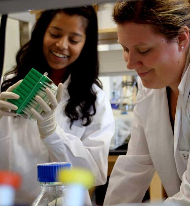 UA Science Internship Pairs High School Students, Research