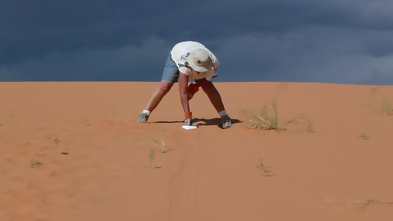 Image result for ice mars dune