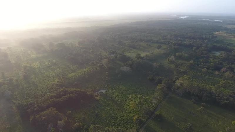 The Aguada Fenix plateau stretches into the horizon