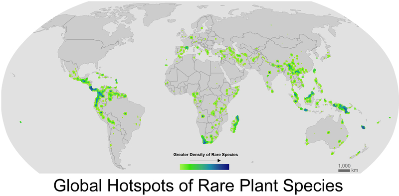 The map shows that rare species tend to cluster in a handful of hot spots, such as the Northern Andes in South America, Costa Rica, South Africa, Madagascar, and Southeast Asia.
