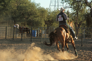 UA Rodeo Club president Ben Saylor says he was drawn to the UA because of it academic reputation and because he would still be able to pursue the sport he loves. (Photo by Beatriz Verdugo/UANews)