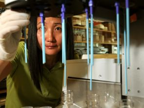 Seunghee Lee, an assistant research scientist and expert in plant science, has worked with sequencing samples at the Wing Lab at the BIO5 Institute (Photo credit: Norma Jean Gargasz/UANews)