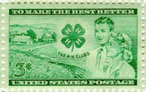 Image courtesy of National 4-H Council.