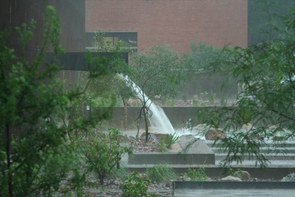 Stormwater flows from the roof of the Architecture Building into the Underwood Sonoran Garden on the north side of campus.