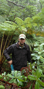 Richard Lapoint, a PERT postdoctoral researcher in the UA's department of ecology and evolutionary biology, combed the Hawaiian rainforest of Olaa looking for elusive fern-eating flies. (Photo: Patrick O'Grady)