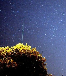 Comet 17P/Holmes amid the Geminids meteor shower. (Image by Mila Sinkova)