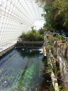 As part of the Desert Sea conversion project, visitors will enjoy new pathways leading them past a mangrove forest and a rocky island. (Photo: Daniel Stolte/UANews)
