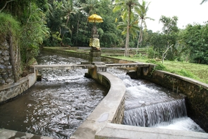 Irrigation water is shared by Balinese farming communities in ways that benefit the community at large.