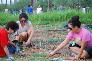 Residents learn the fundamentals of gardening in low desert regions of Arizona. (Photo courtesy Haley Paul)