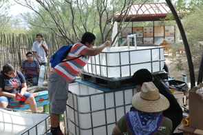 The Aquaponics and Native Seeds Project will develop environmental sustainability through water conservation, education, research and outreach. The systems will include herb that are indigenous to the Tucson area and Sonoran desert. (Photo credit: Ace Charette)