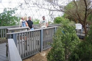 UA researchers are working on numerous projects aimed at mitigating the effects of climate change. Pictured here is former UA doctoral student Henry Adams talking to Biosphere 2 visitors about his research project to evaluate if trees die faster during warmer, drought conditions. His research was cited in the new NCA report. (Photo: Chris B. Zou)