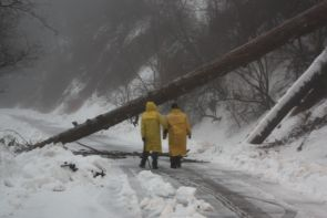 Joe Hoscheidt, astronomical instrumentation specialist for Mountain Operations, and colleague Steve Bland assess a fallen tree blocking Mt. Lemmon's Ski Valley gate during a snow storm. (Photo courtesy of Jay Dee Barryman)