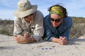 UA archaeologist Vance Holliday and his colleague Natalia Martínez-Tagüeña, a Mexican archaeologist pursuing her doctorate in anthropology at the UA, examine Clovis points uncovered at El Fin del Mundo. (Photo: Greg Hodgins)