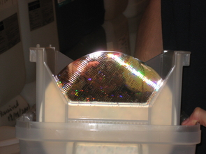 (Click to enlarge) A silicon wafer in the polishing lab. Wafers can hold hundreds of chips.