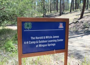 The James 4-H Camp and Outdoor Learning Center is located about 15 miles east of the Prescott Valley in the mountains of east central Arizona.