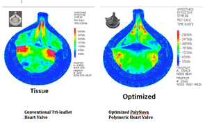 The conventional tissue trileaflet heart valve currently in clinical use (left) depicts much higher stresses (red color) compared to the new PolyNova trileaflet polymeric valve (right) that has been engineered to dramatically reduce valve stress. This translates into reduced wear, increased durability, reduced platelet activation and reduced stroke risk. The new valve is made of an elastomeric polymer material so it can be collapsed and deployed in a smaller hole than what presently is required for TAVR.