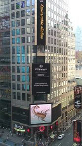 When the FDA approved Anascorp for the treatment of scorpion sting on Aug. 3, 2011, the news traveled around the world, and a very large image of an Arizona bark scorpion, photographed by the UA's Jeb Zirato, found its way to the Reuters billboard in Times Square.