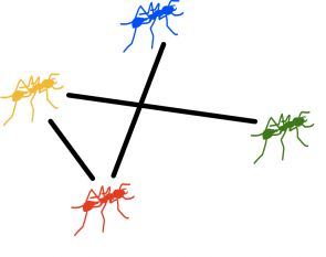 """The study found that time is a crucial but often neglected factor in studying interactions between individuals. Blonder said: """"We could imagine that if the yellow ant passed food on to the red ant, which could later give it to the blue ant. However, the blue ant has no option of giving anything to the yellow ant because that would require moving backward in time."""""""