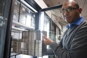 Krishna Veeramah handles a sample of stored DNA at the UA Genetics Core, housed at the UA's BIO5 Institute. This facility specializes in high-throughput DNA processing and sequencing.  (Photo by Patrick McArdle/UANews)