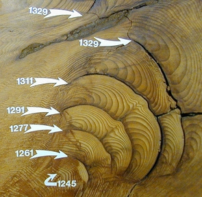 (Click to enlarge) This cross-section of a giant sequoia tree shows some of the tree-rings and fire scars. The numbers indicate the year that a particular ring was laid down by the tree. (Credit: Tom Swetnam)