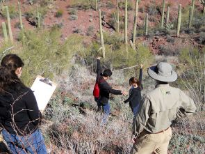 In the Spring semesters of 2012 and 2013, high school students became field biologists, searching for undiscovered species of bacteria and fungi living with desert plants. (Photo: Betsy Arnold)