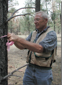 Art Matthias, a program coordinator with Coconino County Extension, tags a tree.