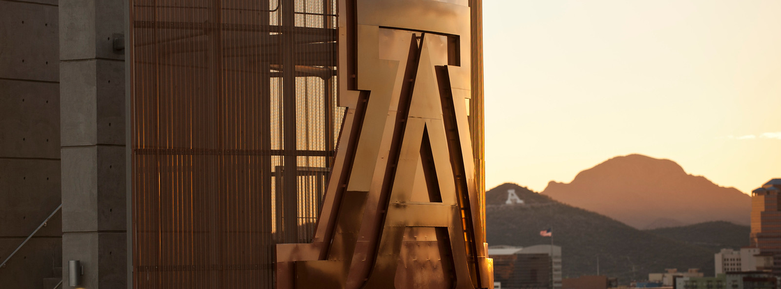 Photo: Paul O'Mara
