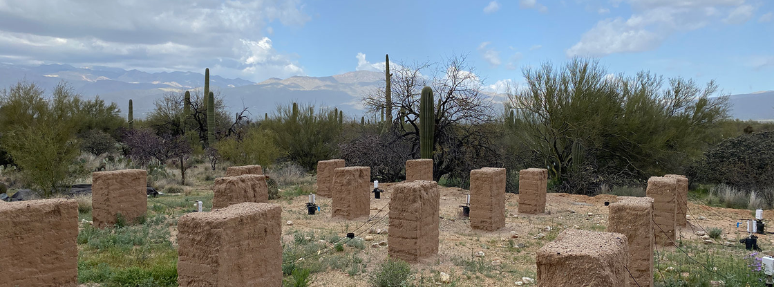 """In an experiment colloquially called """"adobe Stonehenge,"""" researchers at the Desert Research Learning Center at Saguaro National Park are looking at the impact of heavy rainfall on adobe brick construction."""