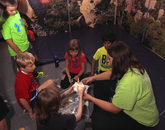 UA students serve as camp counselors. Most are affiliated with the UA College of Education and the College of Science.