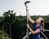 UA graduate student Marielle Smith, well above the tree canopy, checks to see whether light sensors are mounted correctly. The sensors follow the amount of light the forest is getting for photosynthesis. (Photo: Jake Bryant)