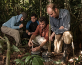 From right: The UA's Joost van Haren and Scott Saleska, Brazilian graduate student Veber de Mouro and Harvard University's Patricia Levi take air samples from the soil chambers in order to measure greenhouse gases produced by microbes in the soil. (Photo: Jake Bryant)