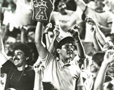 Arizona Stadium fans cheer on their Wildcats.