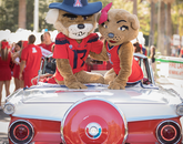Wilbur and Wilma Wildcat shared a convertible in the Homecoming parade.