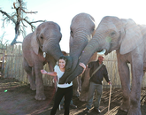 "Junior Rose Harris-Makinen describes her new friends as ""Gentle Giants"" as she poses with elephants during the Summer School in Stellenbosch program in South Africa."